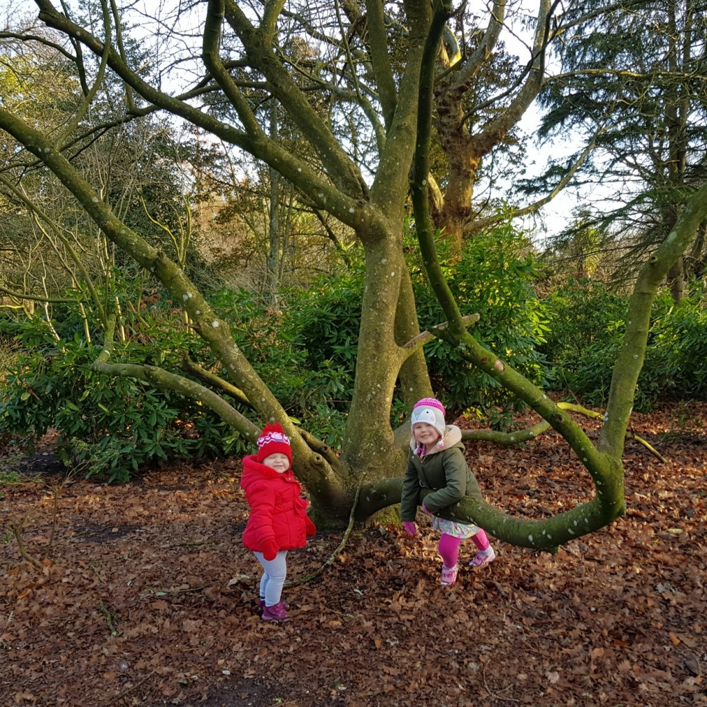 A great shot of our gorgeous girls having fun in the outdoors at Upton Country Park- Poole. Dorset. Lovely family time from Welcomme Wonderland