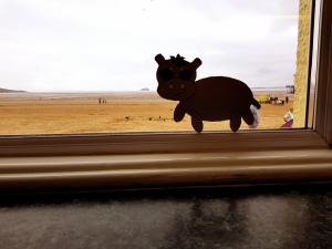 Harris the little grey hippo spotted at Weston Super Mare. Another adventure for one of Scott Welcomme's wonderful creative characters from Wecomme Wonderland